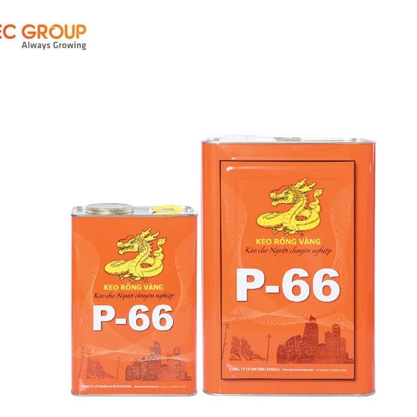 Keo rồng vàng P-66 và Y-66